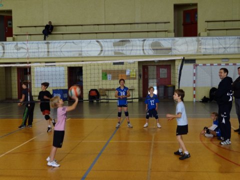 Section volley - Ball